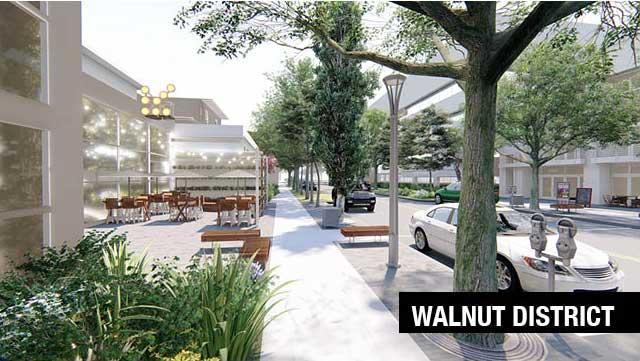 walnut-dist-pic